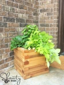 Cedar-Planter